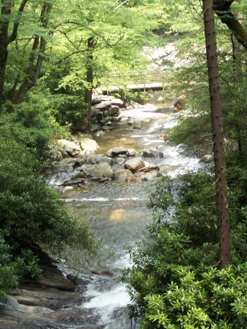 Happiness of Hiking in The Smokie Mountains